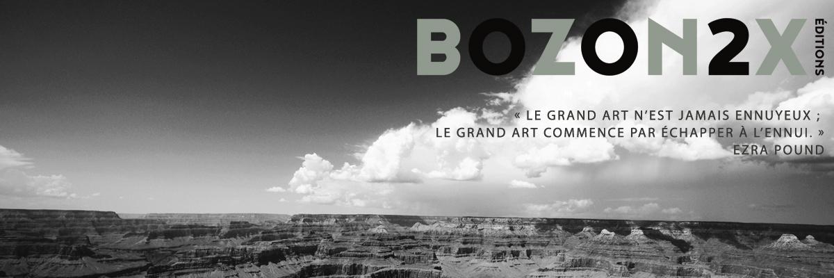 Bozon2x éditions